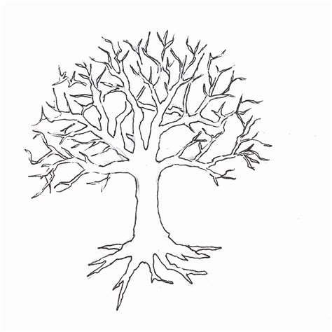 coloring page leafless tree coloring page of a tree without leaves coloring