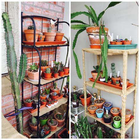 scaffale per piante scaffali per piante ristorante serra tra fiori e piante