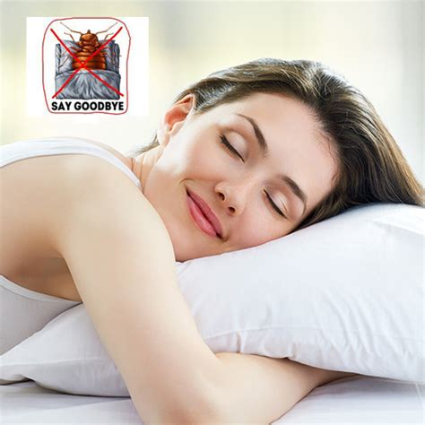 how to cure bed bug bites how to cure bed bug bites find out here