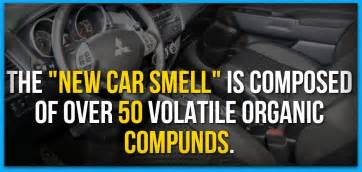 real new car scent facts blast factrange