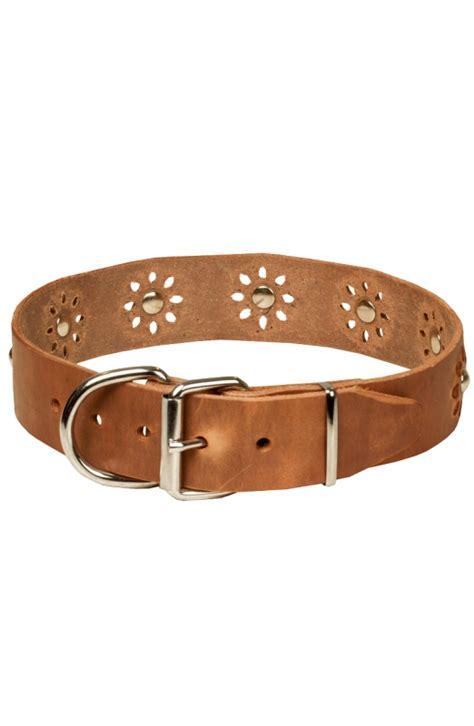 fancy puppy store fancy collar fashion nickel decoration walking in style