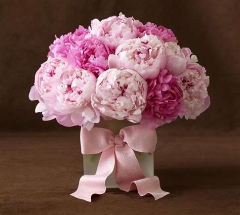 the pink peonies the lust list be my valentine bitches who brunch