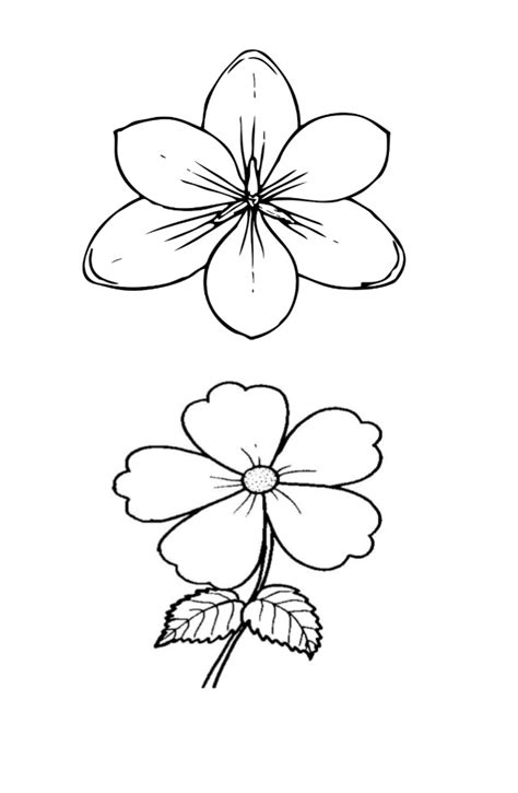 Stabillo Flower Stabillo Motif Bunga sketsa bunga related keywords sketsa bunga
