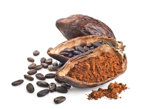 The Cocoa What S The Difference Between Cocoa And Cacao Powder