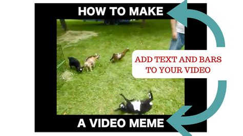 Hot To Make A Meme - add meme www pixshark com images galleries with a bite