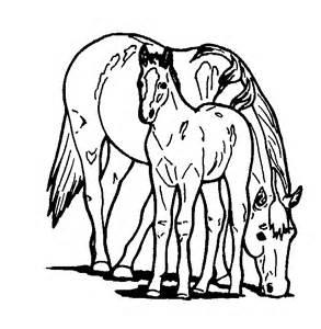 coloriage cheval imprimer gratuit 1001 animaux