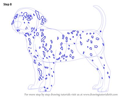 how to a dalmatian learn how to draw a dalmatian dogs step by step drawing tutorials