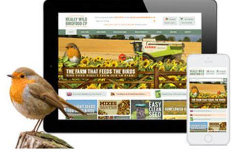 web design portfolio exles of our work