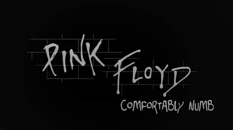 pink flyod comfortably numb pink floyd comfortably numb the wall lyrics youtube