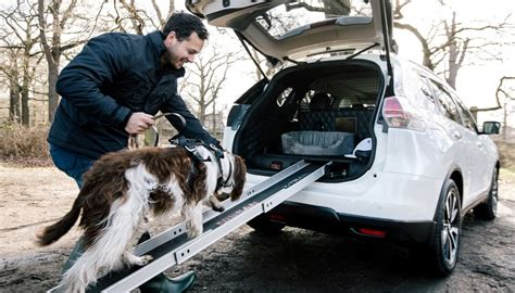 nissan suv for dogs best suv for dogs nissan x trail has given us a treat
