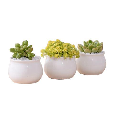 small flower pot modern indoor decor small white ceramic flower pot buy