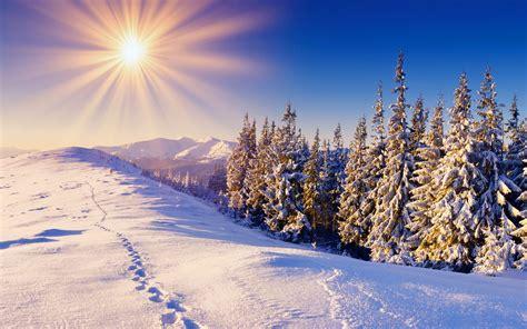 solar winter sun snow   winter wallpaper