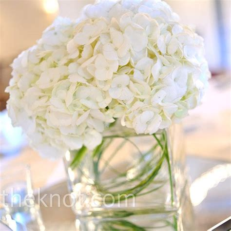 white hydrangea centerpieces for the home pinterest