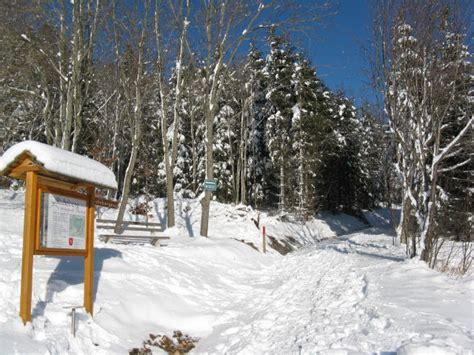 Einsame Hütte by Wald Idee H 252 Tte