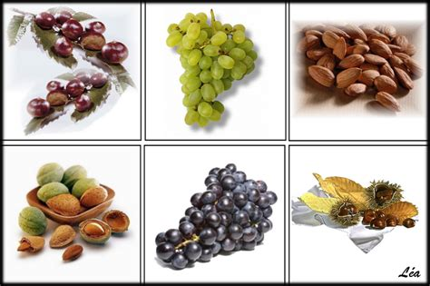 fruits d automne fruits legumes cuisine le de l 233 a487