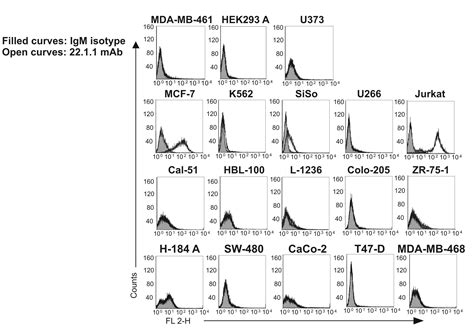 supplementary b surface antigen reevaluation of the 22 1 1 antibody and its putative
