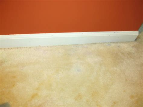 Carpet Tea Stain Removal by Get Old Stains Out Of White Carpet Carpet Menzilperde Net
