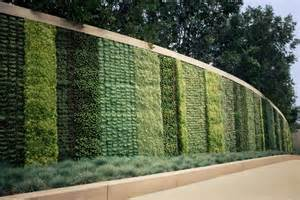 contemporary garden walls choosing where to locate your feature walls budgetreno