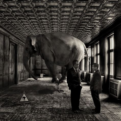 an elephant in the living room afterwards tom and eric weren t exactly sure at which