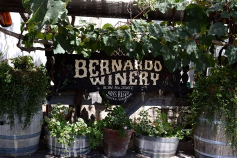 bernardo winery best north county san diego locations for kid photos