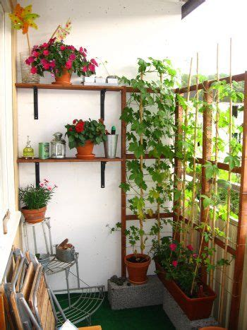 Vertical Gardening Ideas For Balconies 17 Best Images About Balcony Gardening On
