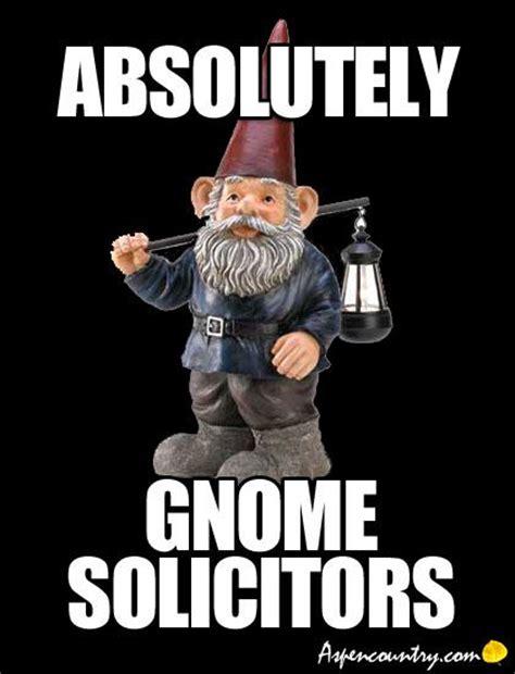 Gnome Meme - the 25 best funny gnomes ideas on pinterest garden