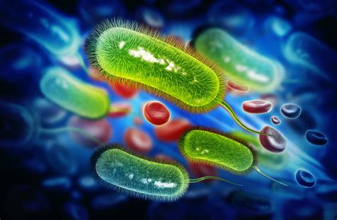 Obat Cefixime obat antibiotik cefixime untuk mengobati infeksi bakteri