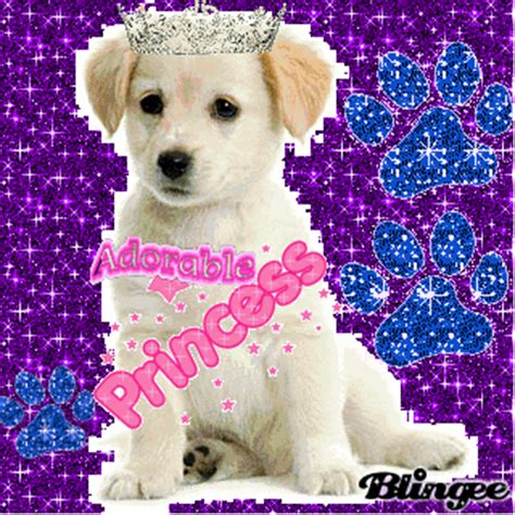 princess puppy puppy princess picture 80852972 blingee