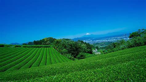 imagenes de hakone japon jap 243 n gu 237 a por hakone taringa