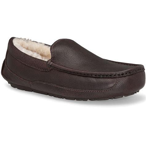 ugg mens slippers ascot ugg ascot slippers s glenn
