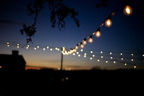 Elegant White Hydrangea And Laurels Scottsdale Az Wedding String Lights Wedding Reception