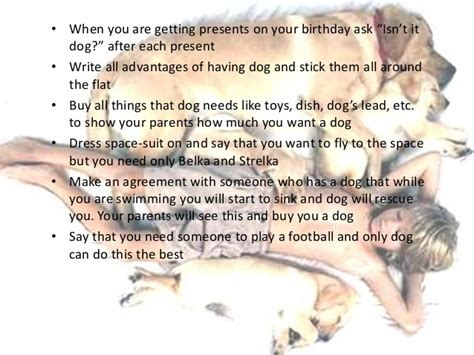 order a puppy how to persuade parents to buy a