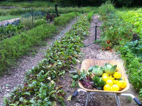 Vegetable And Fruit Garden Endless Gardens Edible Gardens Vegetable Herb And