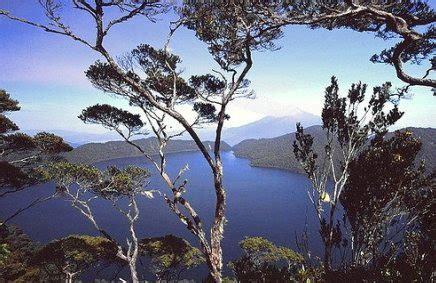 film manusia ular penunggu hutan kerinci misteri orang pendek di area wisata danau gunung tujuh