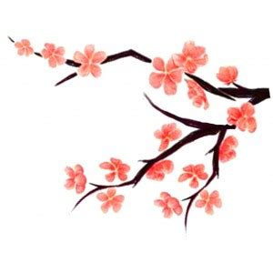 cartoon cherry blossom clipart best