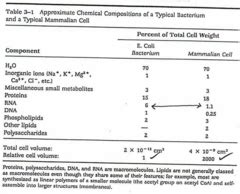 carbohydrates quiz quizlet biochem 2 flashcards quizlet