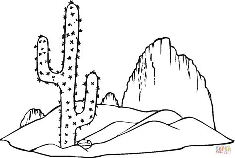 desert coloring pages for kids az coloring pages saguaro cactus coloring page free printable coloring pages