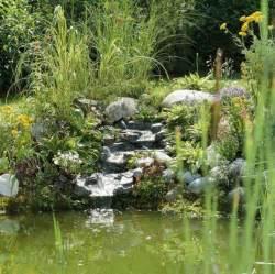petits bassins de jardin comment les installer pratique fr