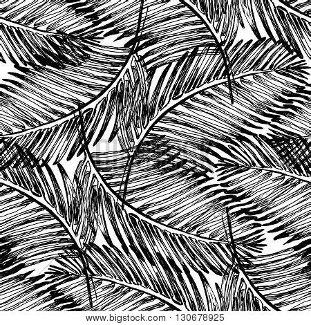 black and white jungle wallpaper images illustrations vectors stock photos images