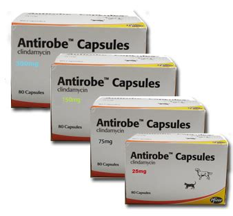 antirobe for dogs antirobe capsules 75mg treatment for infections in dogs