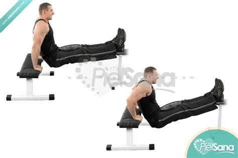 what are bench dips weighted bench dips