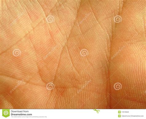 skin closeup stock images royalty free images vectors palm skin up stock image image of science 17073559