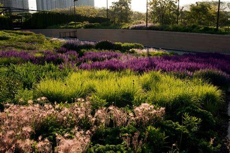 botanical gardens in chicago best botanical gardens in chicago 171 cbs chicago
