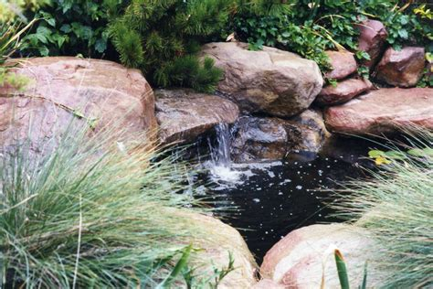 Small Backyard Koi Pond by Koi Ponds Of Santa Barbara Garcia Rock And Water Design