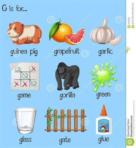 imagenes que comiencen con la letra g imagenes que empiecen con la letra g palabras que