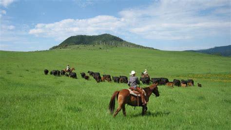 dude ranch colorado dude ranches dude ranches in colorado colorado