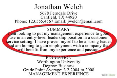 good summary for resume awesome collection of summary on resume how