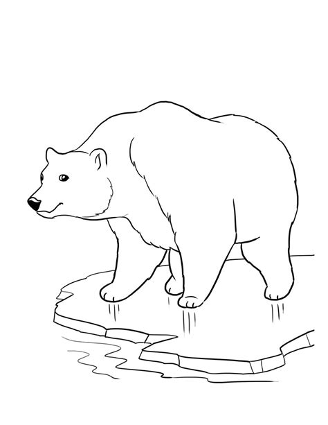 Printable Polar Bear Coloring Pages Coloring Me Polar Color Page