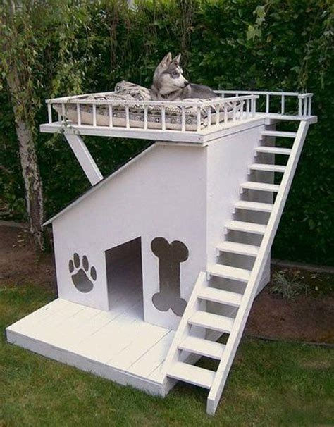 deluxe dog house doghouse shed design ideas