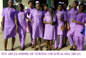 Nursing School Abuja - fct school of nursing midwifery basic nursing admission